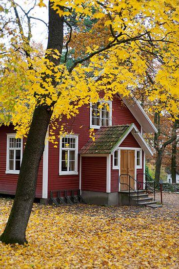 Herfst in Zweden van Arthur van Iterson