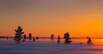 Winteravond in Noord Zweden van Adelheid Smitt