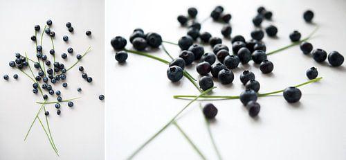 Collage Blauw Fruit