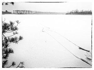 Lost on the ice von Björn Massuger