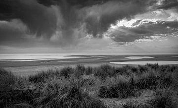 Maasvlakte Strand und Dünen in schwarz und weiß von Marjolein van Middelkoop