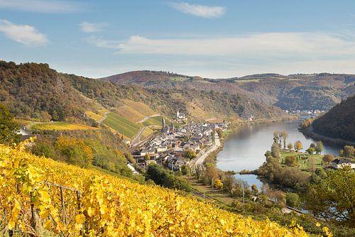 zicht over de wijngaarden langs de Moezel van