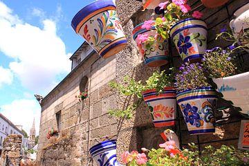 Bunte Blumentöpfe in französischer Straße von Bobsphotography