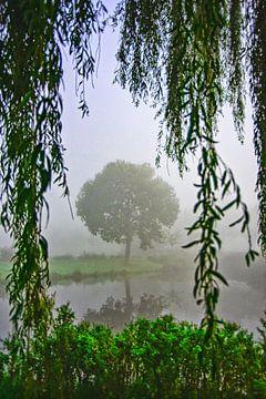 Baum im Nebel Voorburg von Michel Groen