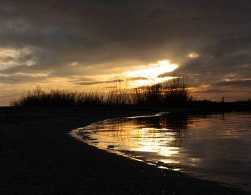 Golden Shore van Lynlabiephotography