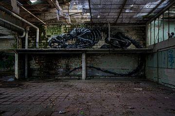 verlaten fabriek von Ivana Luijten