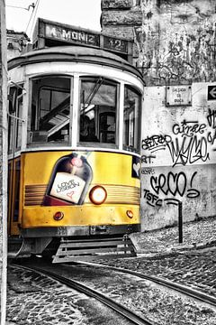 Love Lisbon von Claudia Moeckel