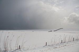 Sneeuwig landschap