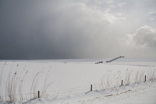 Sneeuwig landschap van