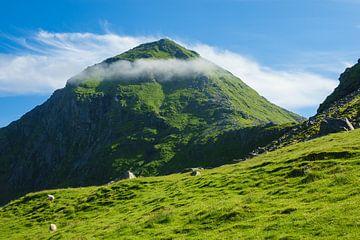 Mountain on the Lofoten Islands in Norway van
