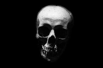Zwart wit doodshoofd van Patrick Verhoef