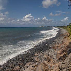 Kiezelstrand bij Sainte Suzanne op het eiland Réunion van Reiner Conrad