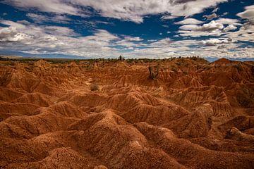 Tatacoa-woestijn van Ronne Vinkx