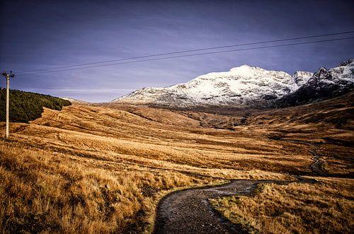 Schotland, land van vlaktes, bergen en schijnbaar oneindige weggetjes