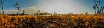 Sonnenuntergang auf der Heide von Royvs Fotografie