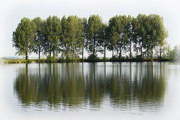 Een rij bomen langs een waterplas van Gerrit Veldman