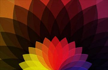 vector flower  von Gayan Virajith