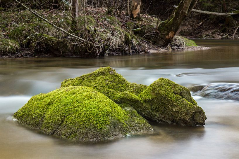 Fels im Wasser van Andreas Stach