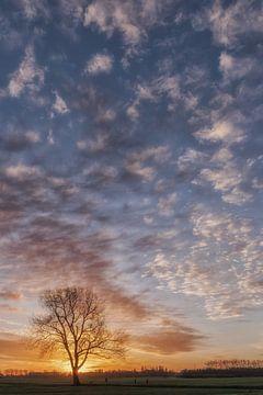 Schöne Wolken bei Sonnenaufgang von Moetwil en van Dijk - Fotografie
