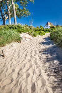 Strandaufgang in Ahrenshoop an der Ostsee