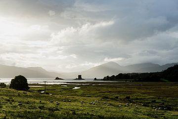 Typische schottische Landschaft in den schottischen Highlands bei Castle Stalker von Robert Paul Jansen