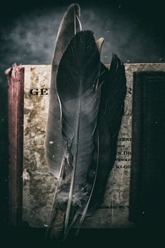Geheimnisse von Mark Isarin | Fotografie