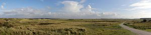 Panorama Ballumer duinen van Sander de Jong