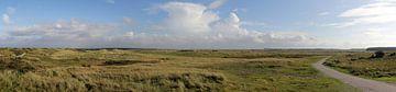 Panorama des dunes de Ballumer