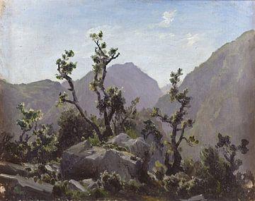 Carlos de Haes-Asturias-Gebirge, Stein auf dem Wald, Antike Landschaft