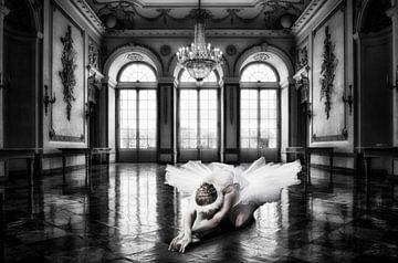 Swan Song van Jacky Gerritsen