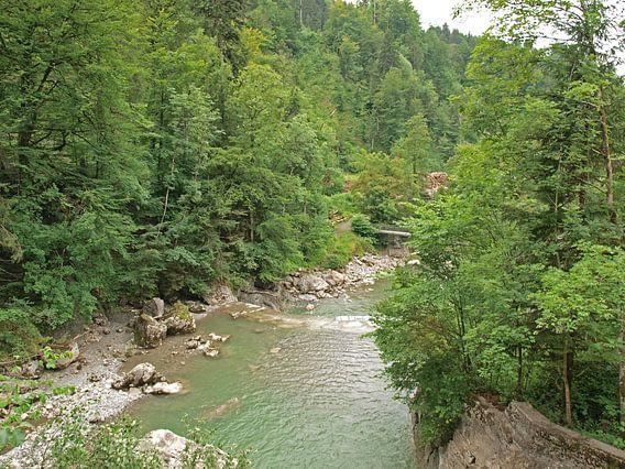 Rivier bij Rappenlochschlucht, Dornbirn, Oostenrijk