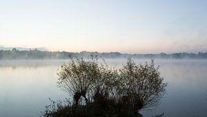 Ochtendgloren in  de mist