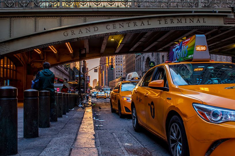 Grand Central terminal New York City van Thomas Bartelds