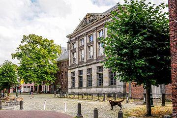 Gerecht in Leiden van Dirk van Egmond