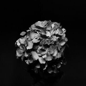 De essentie van kunstbloemen van Rene  den Engelsman