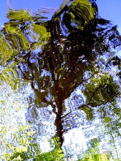 Tree Magic 188-B van MoArt (Maurice Heuts)
