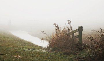 Misty morning ... van Annelies Schreuder