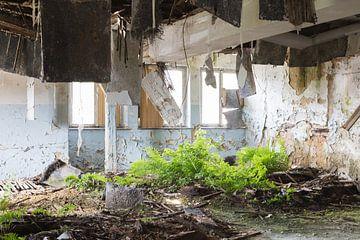Abgelaufener Platz Kent-Schule von Danique Verkolf