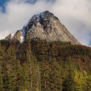 Herfstkleuren in Canadese bergen van