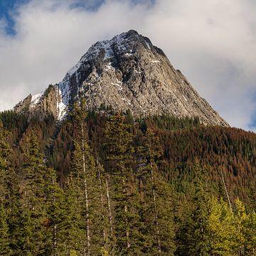 Herfstkleuren in Canadese bergen van Samantha van Leeuwen