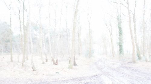 Winter bos trails van