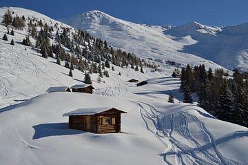 Eerste sporen in de sneeuw van