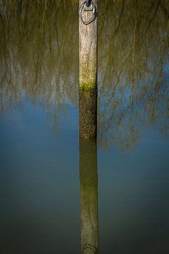 Hoe diep is het water in de Biesbosch von Petra Brouwer