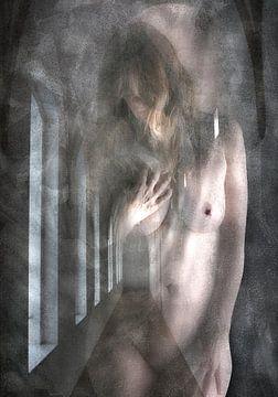 Geheime Schönheit - Akt von Henk Speksnijder