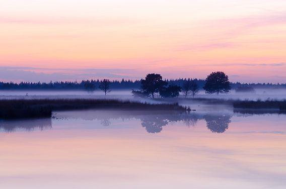 Strabrechtse Heide 154