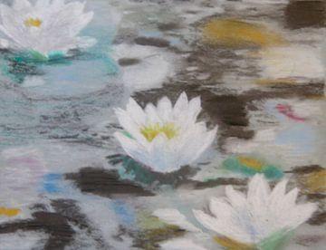 Waterlelies (wit) in een poel van kleur (waterlilies, Lelies) von