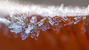 IJskristallen op  paddestoel van