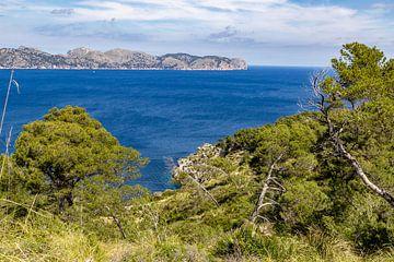 Küstenlandschaft vor der Halbinsel La Victoria auf Mallorca von Reiner Conrad