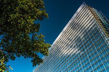 Office européen des brevets sur Tino van Dam
