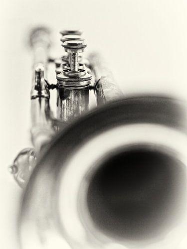 Solo... (muziek, muziekinstrument, trompet, jazz)
